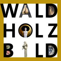 WALD HOLZ BILD